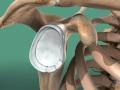ViewMedica Image